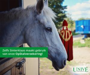 unive-sinterklaas-inhaker-2014-500x416